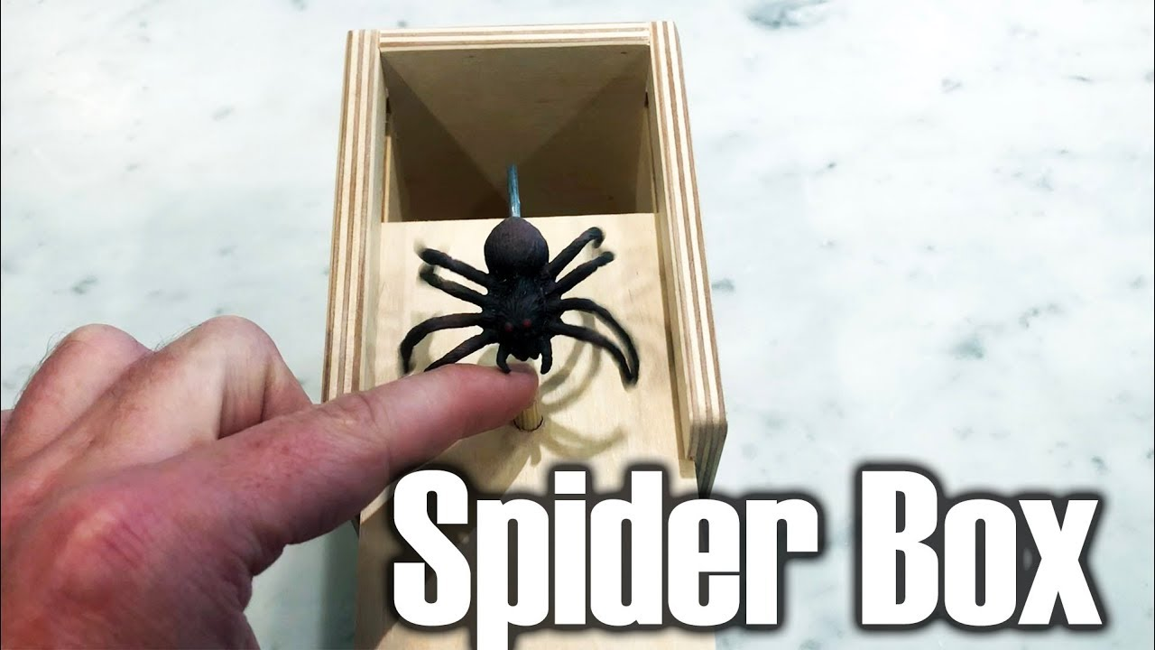 Scaring people with the Spider Box
