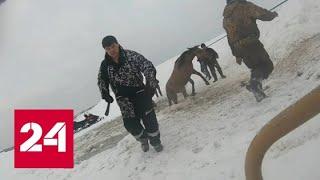 """видео: """"Дура, выход там!"""": захватывающее дух спасание лошадей из ледяной ловушки сняли на видео - Россия 24"""