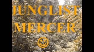 junglist mercer ragga jungle mix 3