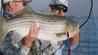 Boston Harbor's Incredible Striper Fishing | Fishing is Local