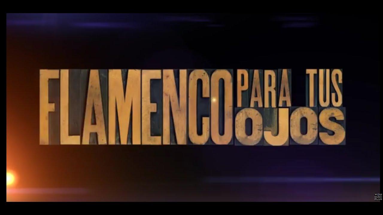FLAMENCO PARA TUS OJOS - FLAMENCO FOR YOUR EYES