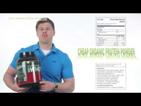 Optimum Nutrition 100% Whey Gold Standard Reviews - Cheap Organic Protein Powder