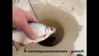Волга. Свердлово. 30.03.2013