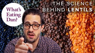 The Science Behind Lenтils (and our Recipe for Palak Dal)   What's Eating Dan