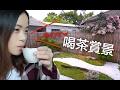 [試食]超美日式庭院|青島街驛前大和咖啡館|還有貓咪陪伴