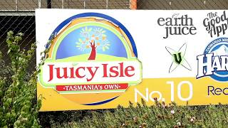 Juicy Isle squeezes great value from Toyota forklifts