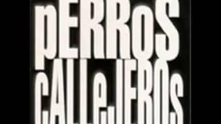 PERROS CALLEJEROS - VIDAS PERRAS - PROD. CIENTIFICO - 2002 -