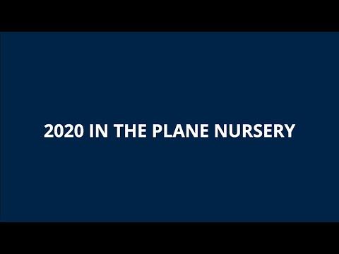 2020 in the plane nursery