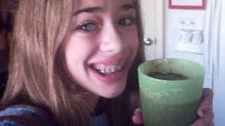 How To Make An Oreo Milkshake (without Icecream)