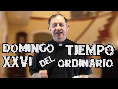 Domingo XXVI del tiempo ordinario - Quien no está contra nosotros está con nosotros