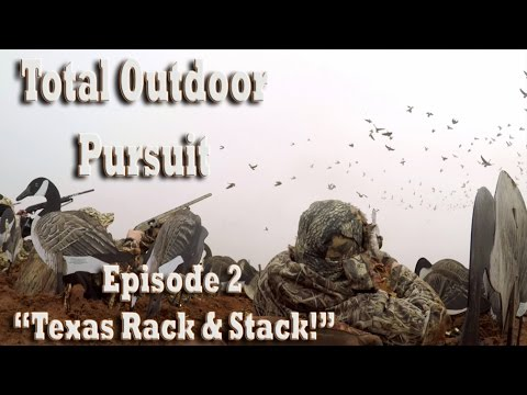 Texas Goose Hunt / Waterfowl Hunting With Longneck Outfitters
