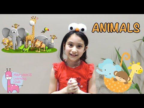 interesting-facts-about-animals-for-kids-معلومات-مشوقة-عن-الحيوانات-للأطفال