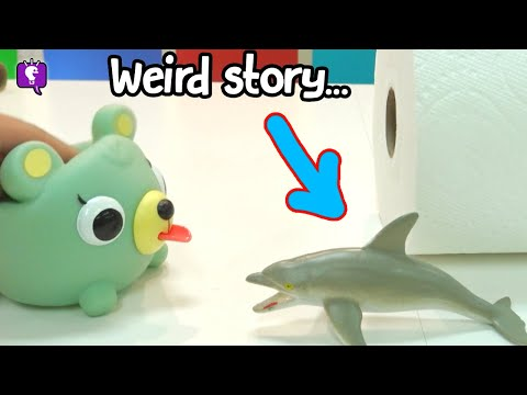 hobbypig's-dolphin-story-named-duke-by-hobbykidstv