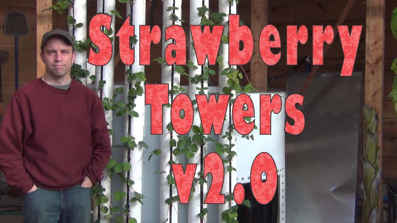 How To Build Strawberry Towers 2 0 Youtube