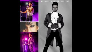 The Prince Revolution - Tribute Experience
