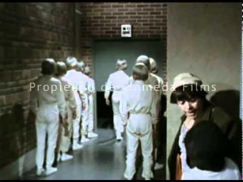 Chabelo y Pepito detectives (trailer original)