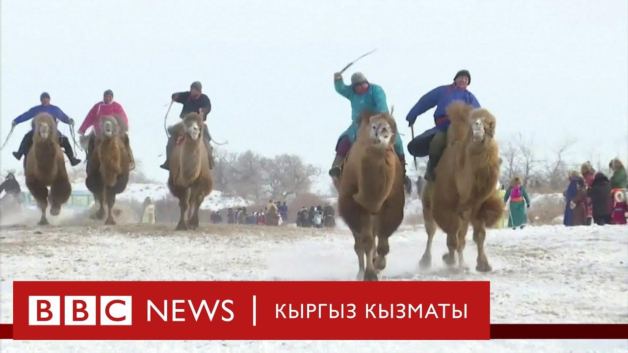 Би-Би-Си ТВ жаңылыктары (24.12.19) - BBC Kyrgyz