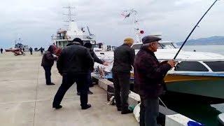 Батуми 2020 внетуристический сезон зимой в январе морская рыбалка в Батуми Батумская кефаль