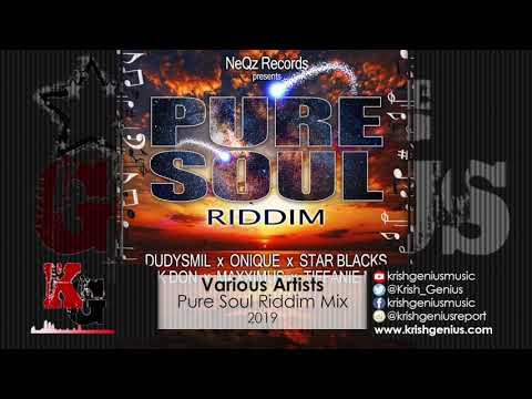 Pure Soul Riddim Mix (NeQz Records) (Official Audio 2019)