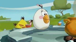 Злые птички - Энгри Бердс - Кордон блю (S1E7) || Angry birds Toons