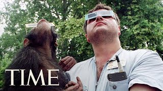 Video Smarter Animals May 'Freak Out' More During Total Solar Eclipses | Solar Eclipse 2017 | TIME download MP3, 3GP, MP4, WEBM, AVI, FLV Juli 2018