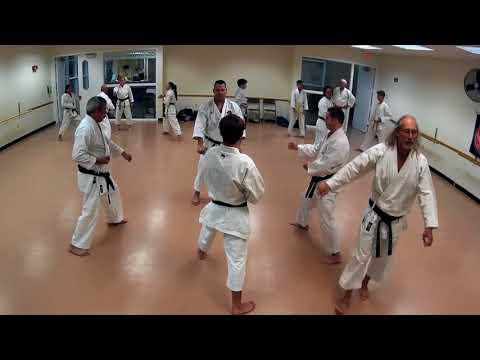Karate Black belt drills