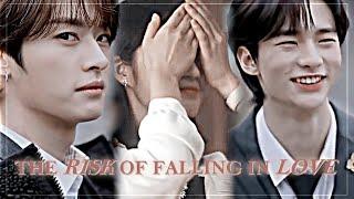 lee know   hyunjin   y/n ♡ love triangle au