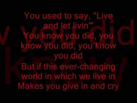 Schmoyoho - THE MUFFIN SONG Lyrics | MetroLyrics