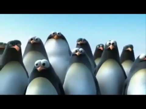 Funny Motivational Video