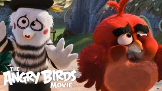 The Angry Birds Movie - TV Spot: Get Ready!