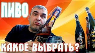 VLOG - Обзор дешевого пива