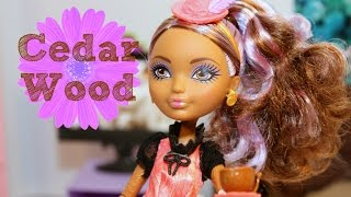 Cedar Wood Unboxing & Review | Ever After High | Hat Tastic | Mattel | Tea Party | Pinocchio