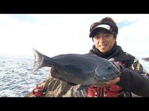 【いつでも釣り気分!】#244 魅力溢れる甑島の磯 最高峰タックルを携えて良型グレを追う!