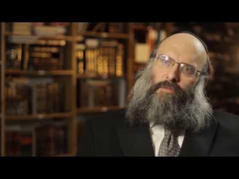Rav Mosheh Twersky ztl Hyd Memorial Video