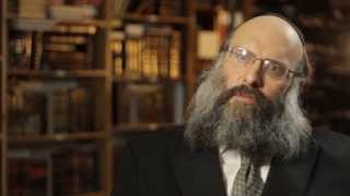 Rav Mosheh Twersky ztl Hyd Memorial Video