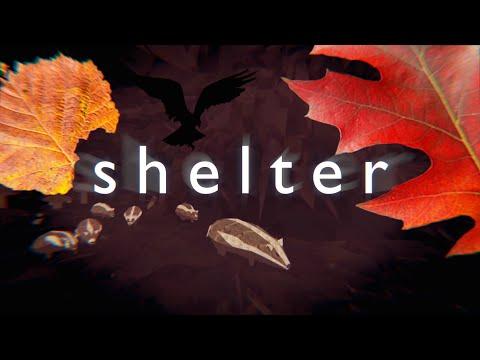 Shelter: Das Nackte Überleben