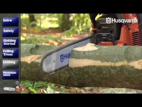 Chainsaw Safety – Ag Safety and Health
