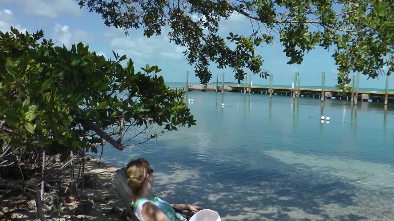 Hilton key largo resort picture of hilton key largo resort key - Beach View From The Hilton Key Largo
