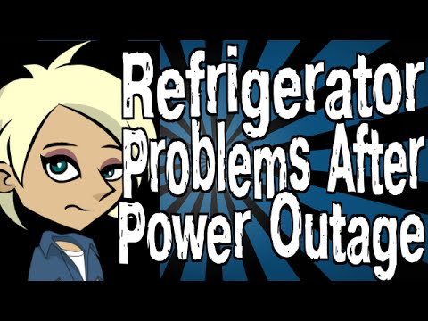 Refrigerator Problems After Power Outage Youtube