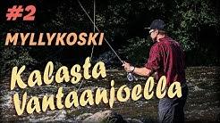 Vinkkejä aloitteleville perhokalastajille - Peltsi esittelee Myllykosken
