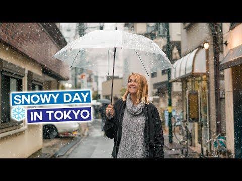 Snowy Day in Tokyo - Japan in Winter Vlog