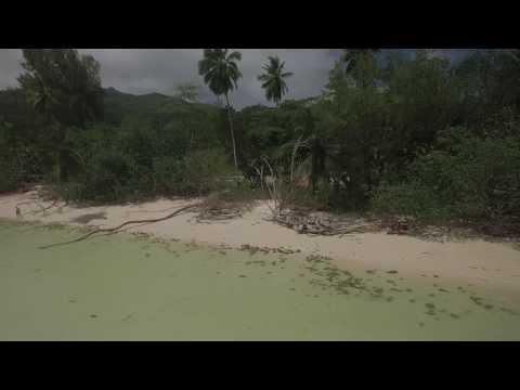 Dji Phantom 3 pro Seychelles anse la mouche part 6