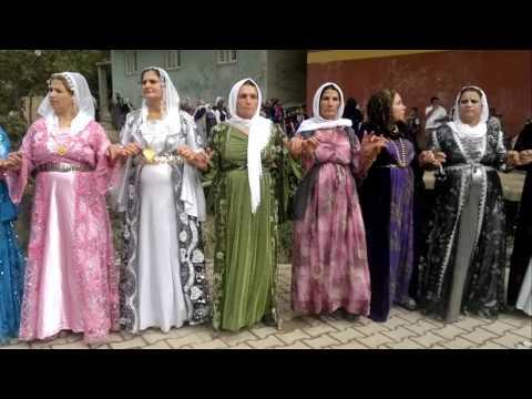 Şırnak Uludere Goyan Düğünleri - Daweta Kurda