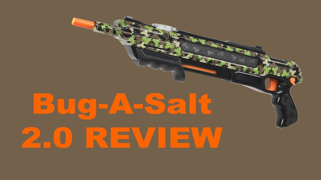 Bug A Salt 2 0 Review Youtube