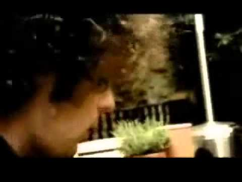 The Fratellis - Whistle for the choir - Legendado