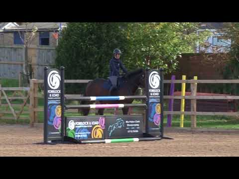 British Showjumping Training - Stepping up to Newcomers Part 2 Introducing lateral work