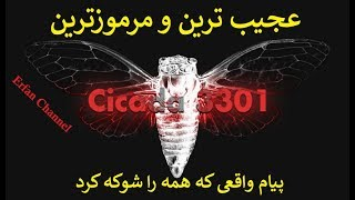 عجیب ترین و مرموزترین پیام واقعی که همه را شوکه کرد!!!(Cicada 3301)