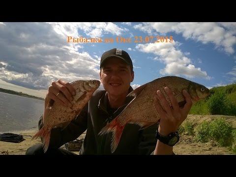 все о рыбалке фидером на реке видео