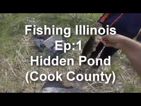 Fishing Illinois EP:1 Hidden Pond (Cook County)