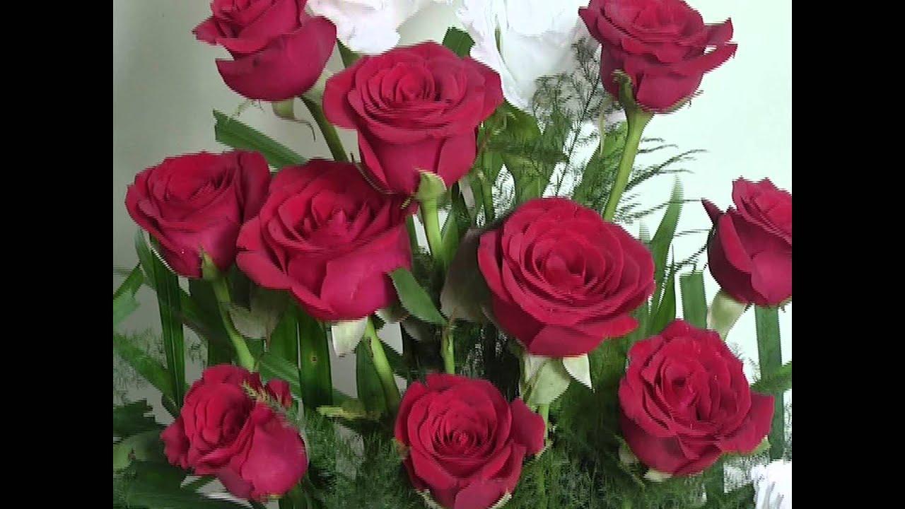 Flower Bokeh (India)